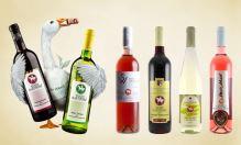 Svatomartinská a Mladá vína 2020 právě teď k objednání