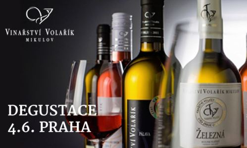 Degustace fantastických vín z Vinařství Volařík