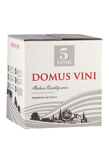 Pinot Grigio, Bag in Box, DOC, 2019, Domus Vinii, 5 l