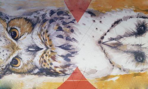 Two Owls - Špičková vína z Buhlarska